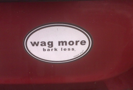 Wag more ...